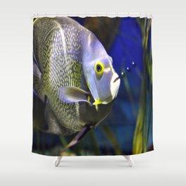 Fish Bubbles Shower Curtain