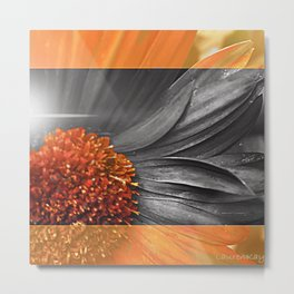 Inside-Out-Mary Metal Print