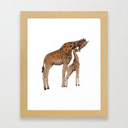 Mom and daughter giraffe Framed Art Print