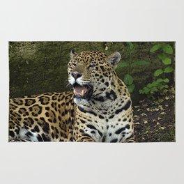 The Jaguar Rug