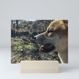 Shiba Inu profile in the woods Mini Art Print