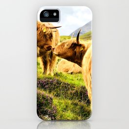 Cattle Kiss iPhone Case