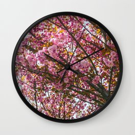 Beautiful Cherry Blossoms Wall Clock