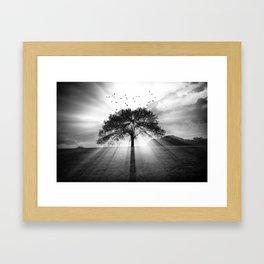 Birds Over A Sunset Tree Framed Art Print