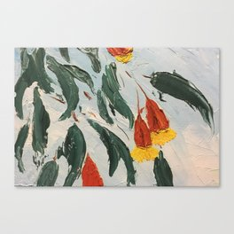 fuschia gum in flower Canvas Print