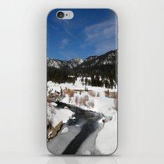 Carson River iPhone & iPod Skin