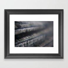 Feather Framed Art Print