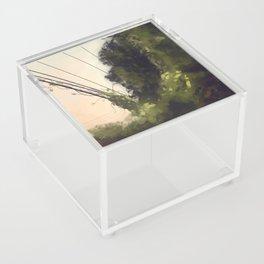 Overgrown Acrylic Box