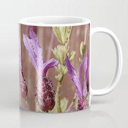French Lavender (Lavandula stoechas) Coffee Mug
