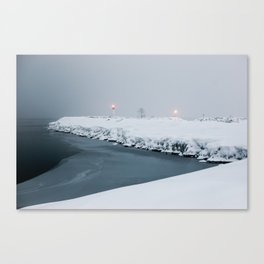 winter contact Canvas Print