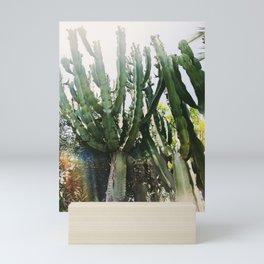 Cactus Desert Photography Mini Art Print