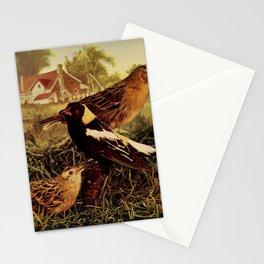 Neltje Blanchan - Bird Neighbours (1903) - Bobolinks Stationery Cards