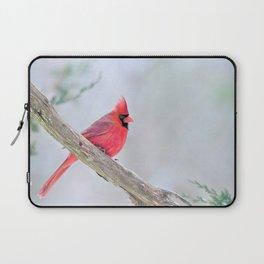 Grumpy Cardinal Laptop Sleeve