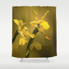 Golden Yellow Daffodils Shower Curtain