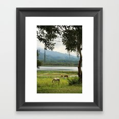 Honduras - A quiet Wednesday Framed Art Print