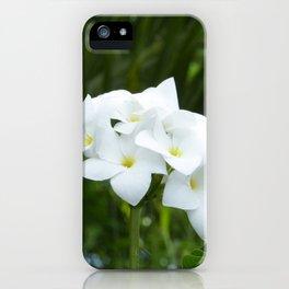Caribbean purity iPhone Case