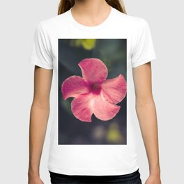 Flower Photography by Tra Tran T-shirt