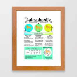 Labradoodle Coat & Grooming Infographic Framed Art Print