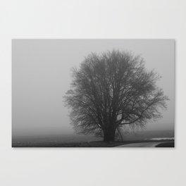 Single Tree Canvas Print