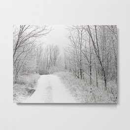 Snowy forest Metal Print
