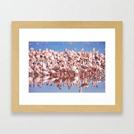 Flock of Flamingos Framed Art Print