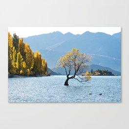 The Wanaka Tree in New Zealand Canvas Print