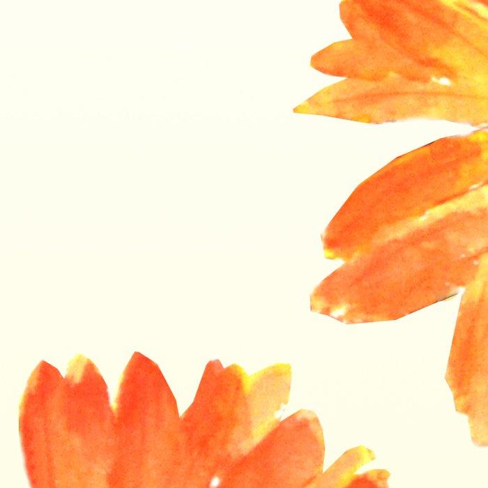 orange gerbera Leggings