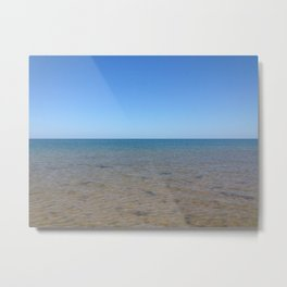 In the Sea Metal Print