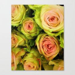 Green & Pink Bouquet Canvas Print