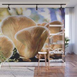 Mushrooms Wall Mural