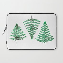 Fiordland Forest Ferns Laptop Sleeve