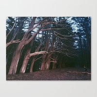fitzgerald Canvas Prints featuring Fitzgerald Marine Reserve by Miles Lehman