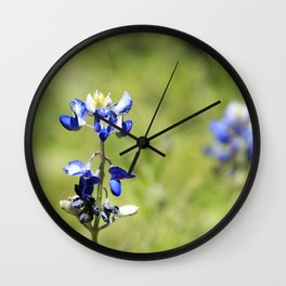 Last of the Bluebonnets Wall Clock