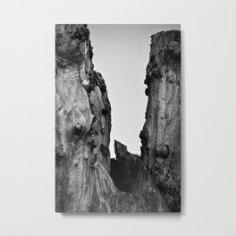 BETWEEN US Metal Print