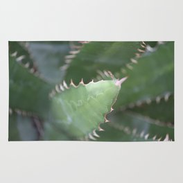 Agave Pads & Spines Rug