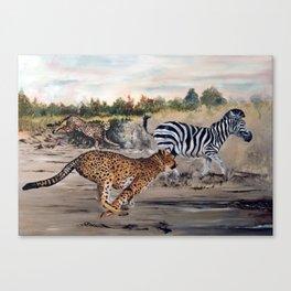 Season of the Big Cat - Cheetah Alley Canvas Print
