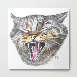 Cat Scratch Fever Metal Print