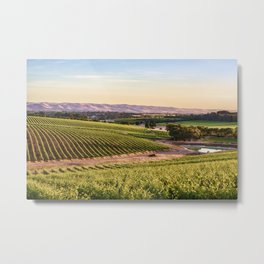 McLaren Vale Magic Metal Print