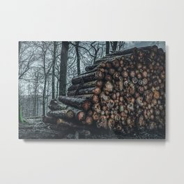 Poltery Site (Wood Storage Area) After Storm Victoria Möhne Forest 3 dark Metal Print