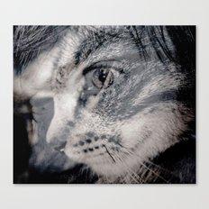 Cat vs human black / white Canvas Print