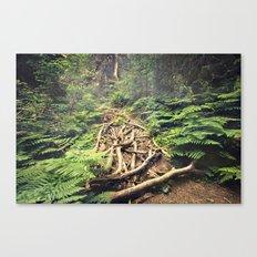 Misty Rainforest Canvas Print