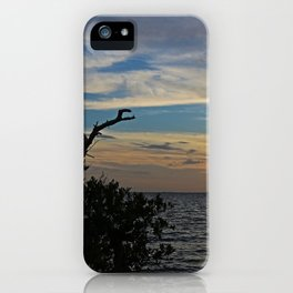 Until I Say Goodbye iPhone Case