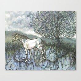 Pale Hose Canvas Print