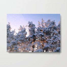 Winter Panorama Metal Print
