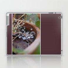 water's web Laptop & iPad Skin