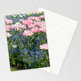 Foxtrot tulips blooming in garden Stationery Cards