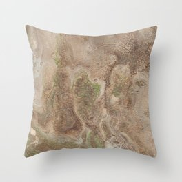Acrylic Flow #0303 - Cafe Condescension Throw Pillow