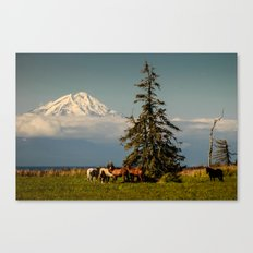 Horses and Mount Redoubt, Enroute to Homer, Alaska Canvas Print