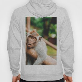 Cute Monkey (Color) Hoody