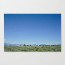 Valensole Mountains Canvas Print